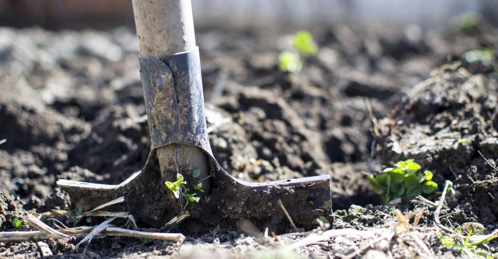 agricoltura biodinamica naturale