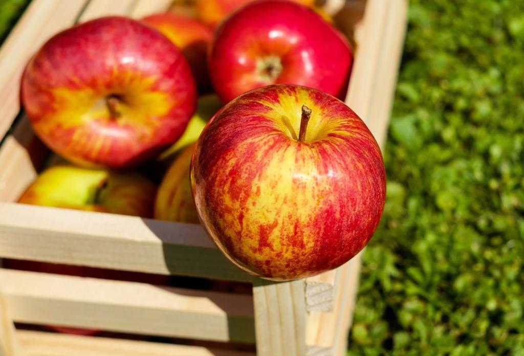 Aceto di mele risorsa per capelli sani e lucenti